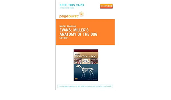 Miller\'s Anatomy of the Dog - Elsevier eBook on Vitalsource (Retail ...