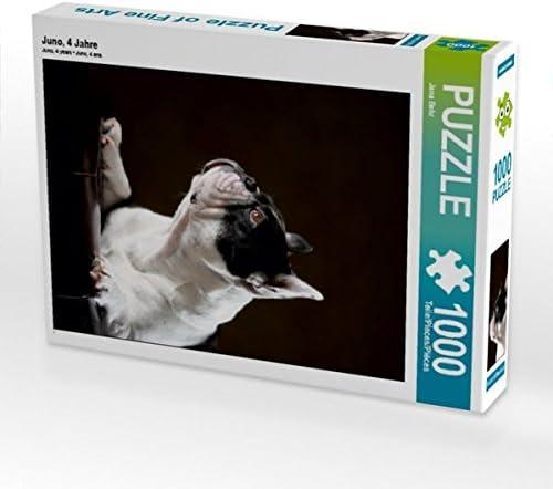 CALVENDO Puzzle Juno, 4 Jahre 1000 Teile Lege-Grösse 48 x 64 cm Foto-Puzzle Bild Von Behr Jana | New Style,En Ligne