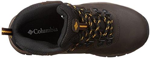 Columbia Youth Newton Ridge, Chaussures de Randonnée Hautes Mixte Enfant Marron (cordovan 231)