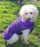 "Purple Weather Resistant Coat - Purple 61cm (24"")"