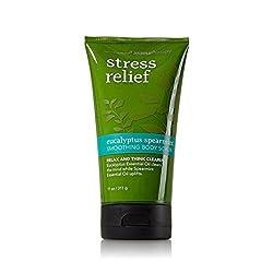 Bath and Body Works Eucalyptus Spearmint Stress Relief Smoothing Body Scrub 11 Ounce