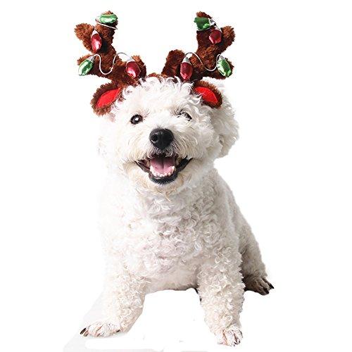 BbearT®, Hut für Katzen, Hunde und Hamster, Kostüm für Weihnachten, Halloween, ()