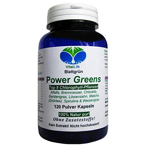 Power Greens Top 8 Chlorophyll Pflanzen 120 Pulver Kapseln Natur Pur NICHT hochdosiert KEIN Extrakt OHNE Zusatzstoffe OHNE Füllstoffe. Hergestellt und abgefüllt in Deutschland. 26331 -