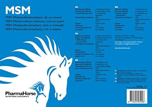 PharmaHorse MSM Pferd 5000 gr.