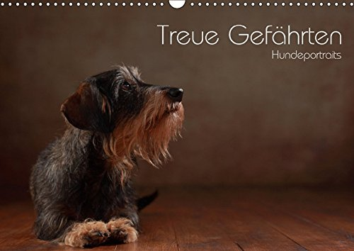 Treue Gefährten - Hundeportraits (Wandkalender 2019 DIN A3 quer): Charakterportraits unserer vierbeinigen Familienmitglieder (Monatskalender, 14 Seiten ) (CALVENDO Tiere)