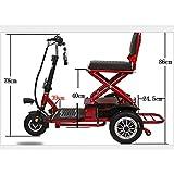 AA100 Triciclo Elettrico Adulto Pieghevole Portatile di Sicurezza Ambientale e Adatto per la Batteria al Litio Veicolo di Mobilità Esterna per Anziani/disabili (12A)