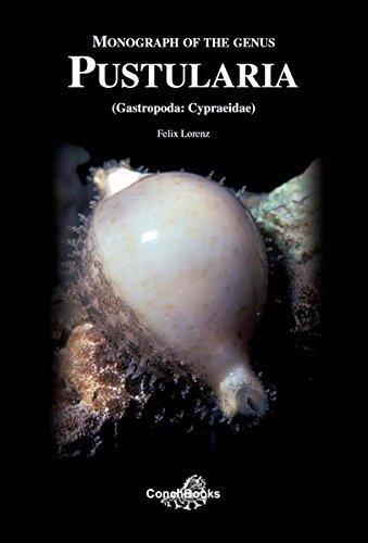 Monograph of the Genus Pustularia (Gastropoda: Cypraeidae)