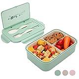 MEIXI Boîte Bento Enfant & Adulte |Bento Box Lunch Box | 2 Couverts Solides | 1400ml | Hermétique | Passe Au Micro-Ondes Et Au Lave-Vaisselle (Vert)