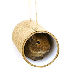 share facebook twitter pinterest premium chewchewbs totally degu 2 pack  amazon co uk  pet supplies  rh   amazon co uk