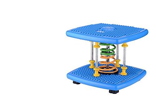 LMZZGAOYANQING Nuova macchina di torsione danza attrezzature macchina, piccolo home fitness Super silenziato modellante stepper (Piccola Torsione)