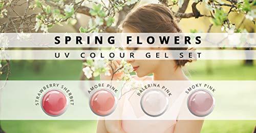 N&BF 4er Farbgel Set Coral Spring Flowers | 4x5 ml UV Color Gel Sparset | Colourgel in vier harmonischen Farben | Made in EU | Sparpaket für Gelnägel & Nail Art Design | Profi Nagelgel bunt