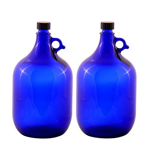 LGL Haushaltswaren GmbH Blaue Glasballonflasche 2X 5 Liter aus Blauglas Flasche mit Schraubverschluss und Henkel (2x5Liter)