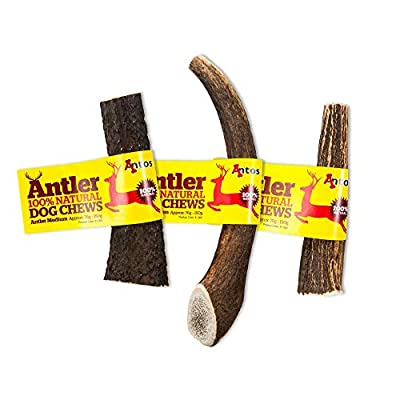 Antos Antler Natural Dog Chew (Size: Medium) Size May Vary from Antos