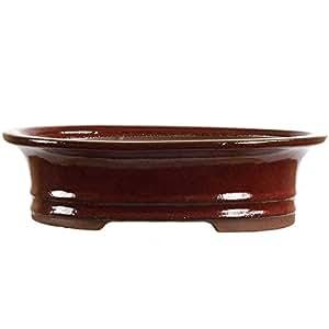 Bonsaischale 25x20.5x7cm Rot Oval Glasiert