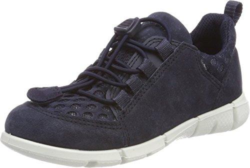 Ecco Intrinsic Sneaker, Sneakers Basses Garçon, Bleu