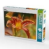 CALVENDO Puzzle Taglilie 1000 Teile Lege-Größe 64 x 48 cm Foto-Puzzle Bild von Gisela Kruse