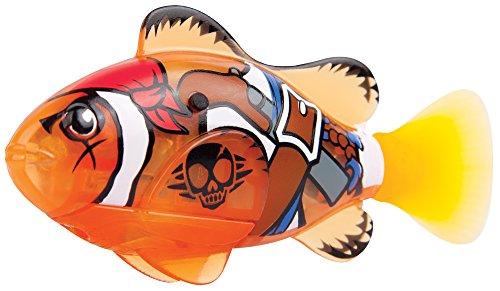 Robo Pesci Pirata - Arancione Clownfish - Arancione Pirata