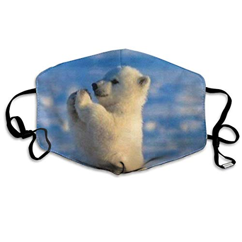 rwachsene,Baby Polar Bear Washable and Reusable Cleaning Mask,For Allergens,Exhaust Gas,Running,Cycling,Outdoor Activities ()