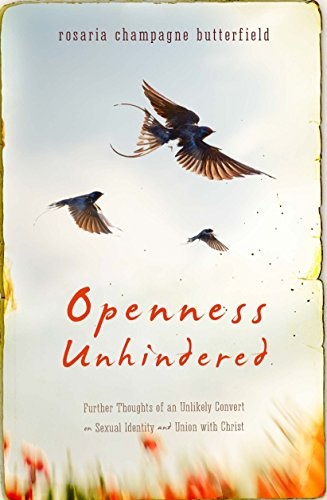 Openness Unhindered: Further Thoughts of an Unlikely Convert on Sexual Identity and Union with Christ (English Edition)
