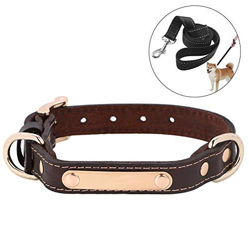 LONTG Hundehalsband mit Namen Telefonnummer Hundemarke Adresse Individuell selbst Gestalten Kragen Hund verstellbar für große kleine Hunde Haustier Pet Halsbänder mit hundeleine als Geschenk -