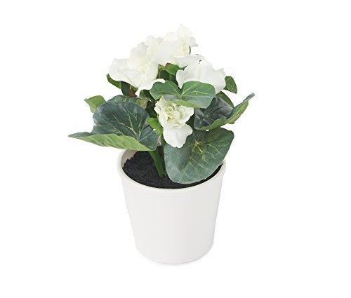 Closer 2 Nature C038D künstliche Blumen Künstliche Gloxinie, 20 cm, crème/weiß