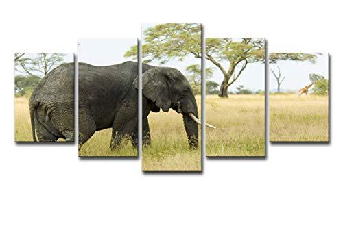 HDWALLART Impresiones De Lienzos Grandes HD Impreso África Elefantes Grupo De Paisajes...