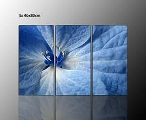 mehrteiliges-Quadro da parete su tela fiori blu su vera tela da appendere (Blue Flower 23x 40x 80cm) bella idea regalo fiori da regalare-immagini pronta da appendere con telaio riesig. Esecuzione Stampa Artistica Su Tela. Cornice inclusa