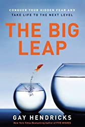 The Big Leap: Conquer Your Hidden Fear and Take Life to the Next Level by Gay, PhD Hendricks (2009-04-21)