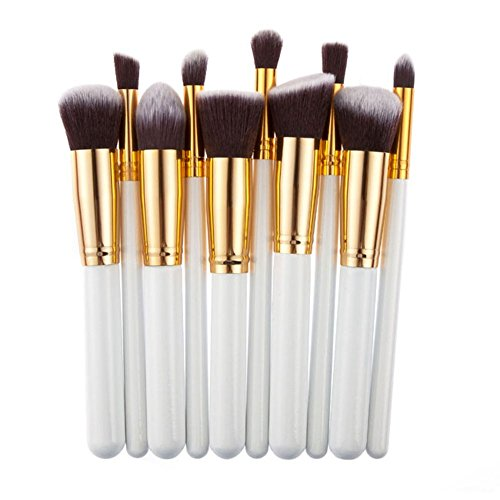 Professional Salon Cosmetics Makeup Foundadtion Blending Brushes Set 10 Pcs (Platinum)