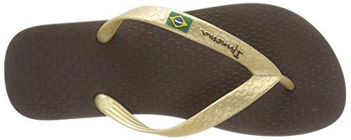 Ipanema Classica Brasil II, Tongs Femme Marron (Brown/Gold)