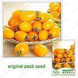 VISTARIC 150pcs / Bag Semi Heirloom Castagna d'Acqua Non-OGM Juicy erbacea Frutta Verdure Bonsai Pianta in Vaso per la Decorazione del Giardino