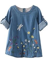 Para 2–7años de edad de niñas, deloito Loose Toddler Kids ropa flores bordado Denim princesa vestidos
