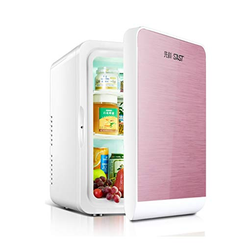 Mini Kühlschrank Kühler Und Wärmer, 22L Kapazität |Kompakt, tragbar und leise |220 V Wechselstrom / 12 V Gleichstrom - Kompatibilität (Gold, Silber, Weiß, Roségold) A ++ (Color : Rose Gold)