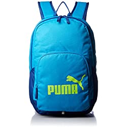 Puma Polyester 21 Ltrs Blue Danube Laptop Bag (7358914)