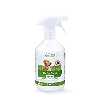 100% Natural Itchy Skin Cure 500ml for Dogs | Stop Itchy Dog Skin | Endorsed by Vets | Natural Repellant for Dogs | Stop Irritated Dog Skin caused by Grass-Mites and Bites AniForte 100% Natural Itchy Skin Cure 500ml for Dogs – Stop Itchy Dog Skin, Endorsed by Vets, Natural Repellant for Dogs, Stop Irritated Dog Skin caused by Grass-Mites and Bites 41Sf 2B 2BLtMSL