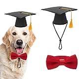 SCIROKKO, Cappello da Laurea per Cani di Piccola Taglia, con Nappa Gialla e Collare con Papillon per Cani e Gatti