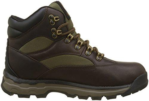 Timberland Chocorua Trail Goretex Waterproof, Stivali Chukka Uomo Marrone (Dark Brown/green A66)