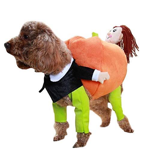 Cacoffay Halloween-Kostüm Haustier Hund Kürbis Hoodie Kleidung Katze-Kostüm,M (Katze Und Der Kontrolle Tier Kostüm)