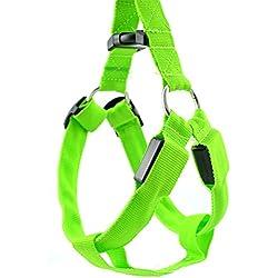 mascotas perros accesorios arnes deportiva perros arnes pet harness perro collar chaleco, Luminoso ajustable, correas de Nylon LED (XL, Verde)
