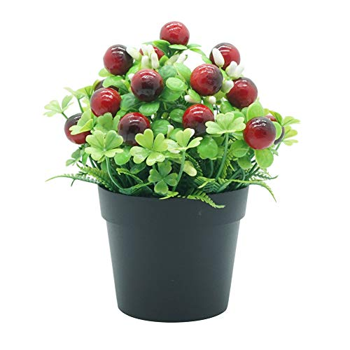 AxssjS 1 stück künstliche Blume Frucht unverblassend echt wie miniascape Shop Restaurant Home Tisch Bonsai Decor Schwarz Rot