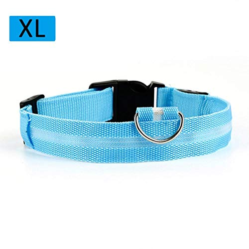 PENVEAT LED Light Night Safety Glowing Nylon Pet Dog Collar Pet Supplies Cat LED Dog Collar Pet Accessories for Small Dogs LED Collars,Blue,XL,China -