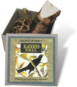 Blackbird Bird Call