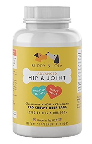 Extra Strength Hip & Joint - 800mg USA Import Glucosamine for Dogs - 120 Chewable Joint Supplements for Improved Mobility and Pet Joint Pain