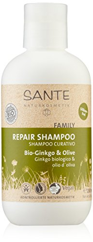 Sante Naturkosmetik Kur Champú Ginkgo y orgánicos de oliva 200 ml, 1 paquete (1 x 200 ml)