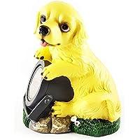 Wichtelstube-Kollektion Gnomo Stube de colección Solar Perro Perro con lámpara Solar Figura para jardín