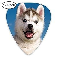 Siberian Husky Cub Guitar Picks 12pack Celluloid Plectrum Custom Gift for Musician