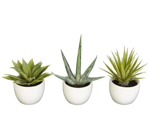 Nearly Natural Fast Natur 4769 Southwest Collection Agave Pflanze, Grün, Set von 3