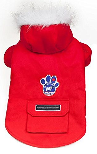 canada-pooch-t10-wilderness-dog-coat-black-choice-of-colours