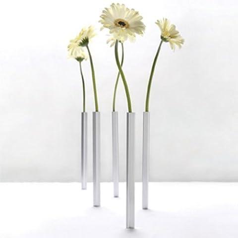 Vase en verre magnétique - 5 pièces