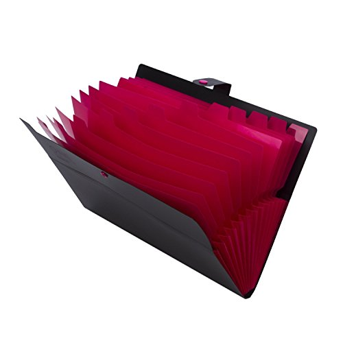 expandable-portable-accordion-file-document-folder-file-organizer-with-snap-button-a4-and-letter-siz